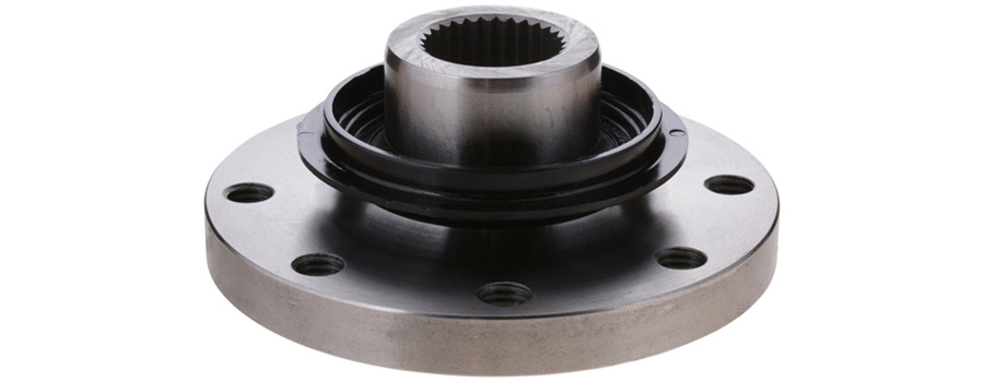 ss companion flange manufacturer in india